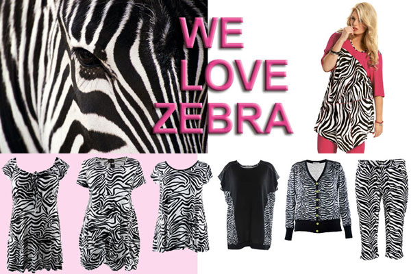 Bagoes loves zebra prints